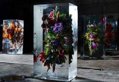 Makoto Azuma iced flower