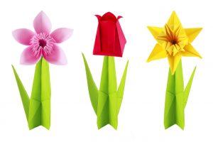 Origami fiori photo