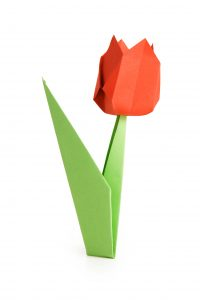 Origami tulipano fiore photo