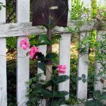 idee-giardinaggio-riciclo07
