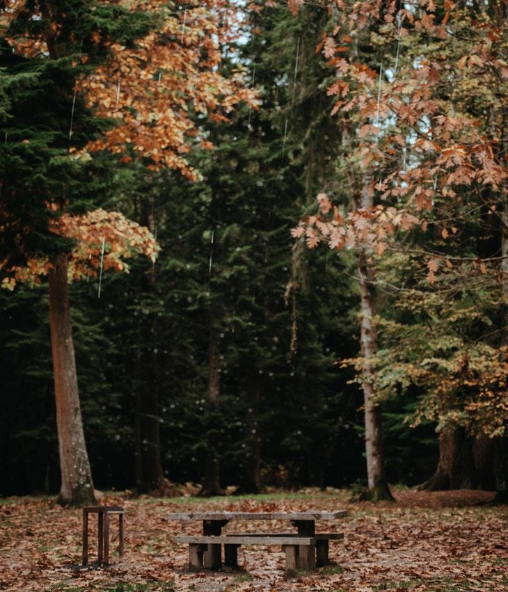 09_MAG_18 Panchine e natura (15)
