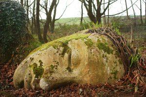 Lost Gardens of Heligan, Cornovaglia, Inghilterra