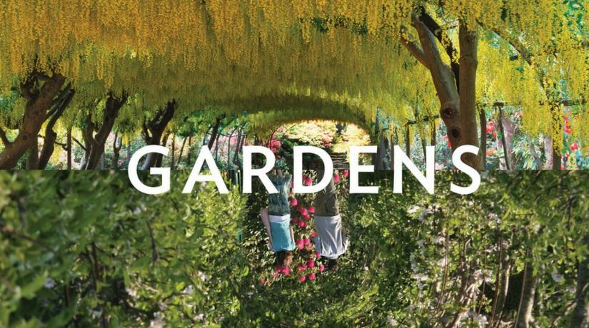 Reflections: Gardens