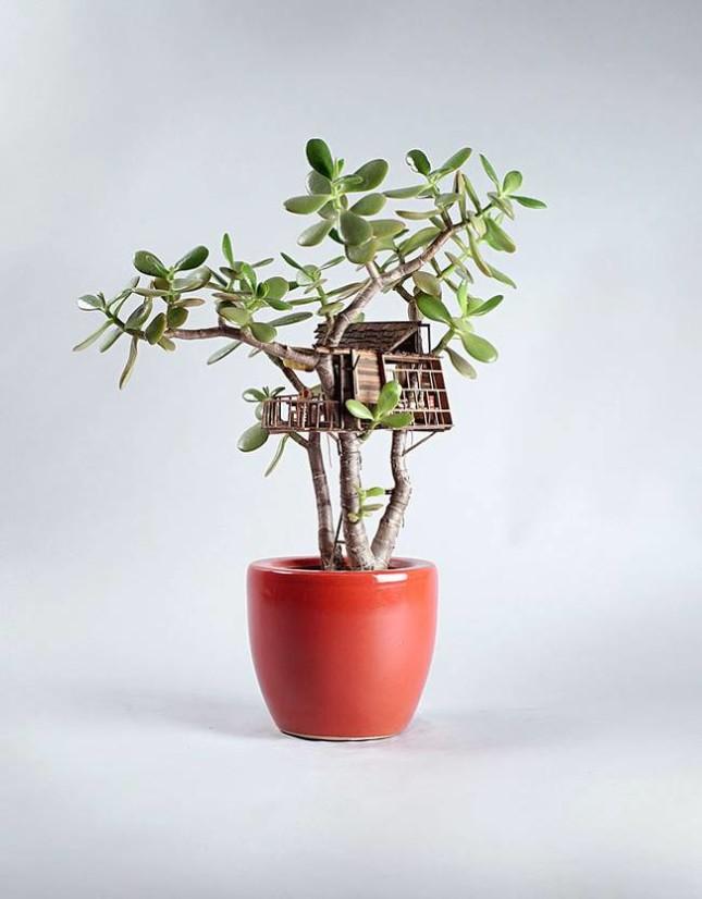 case miniatura di Jedediah Corwyn Voltz 7