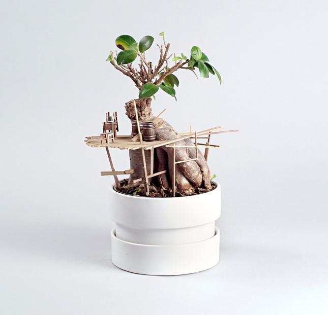 case miniatura di Jedediah Corwyn Voltz 5