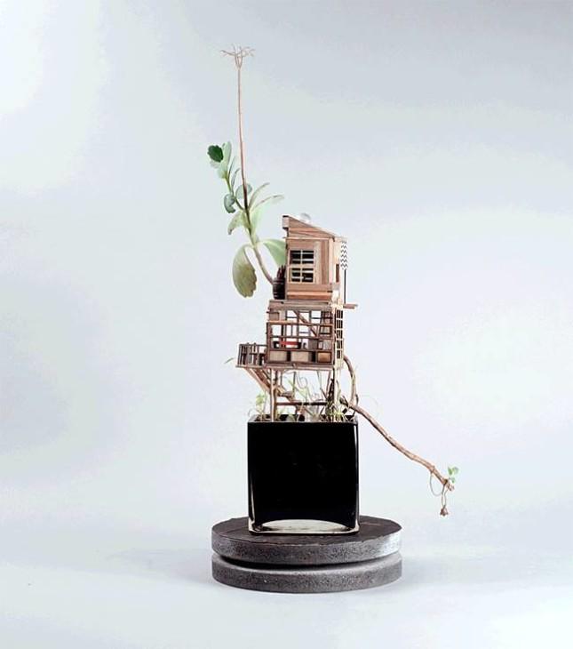 case miniatura di Jedediah Corwyn Voltz 4
