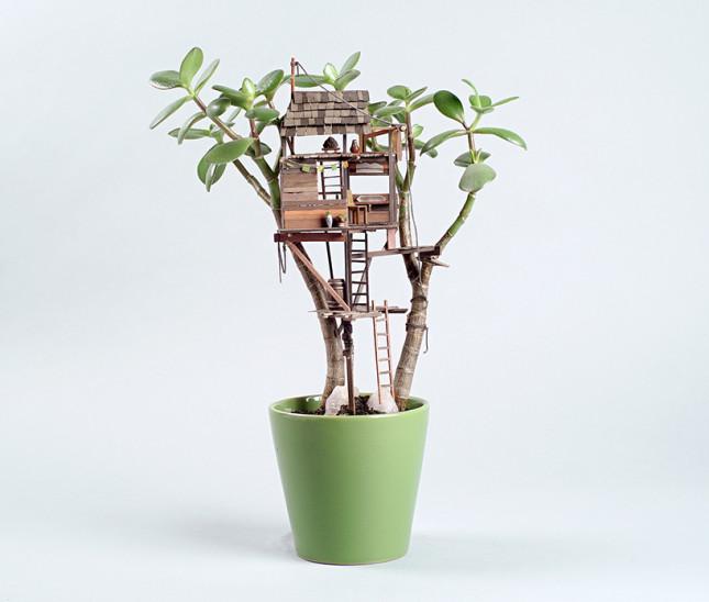 case miniatura di Jedediah Corwyn Voltz 3
