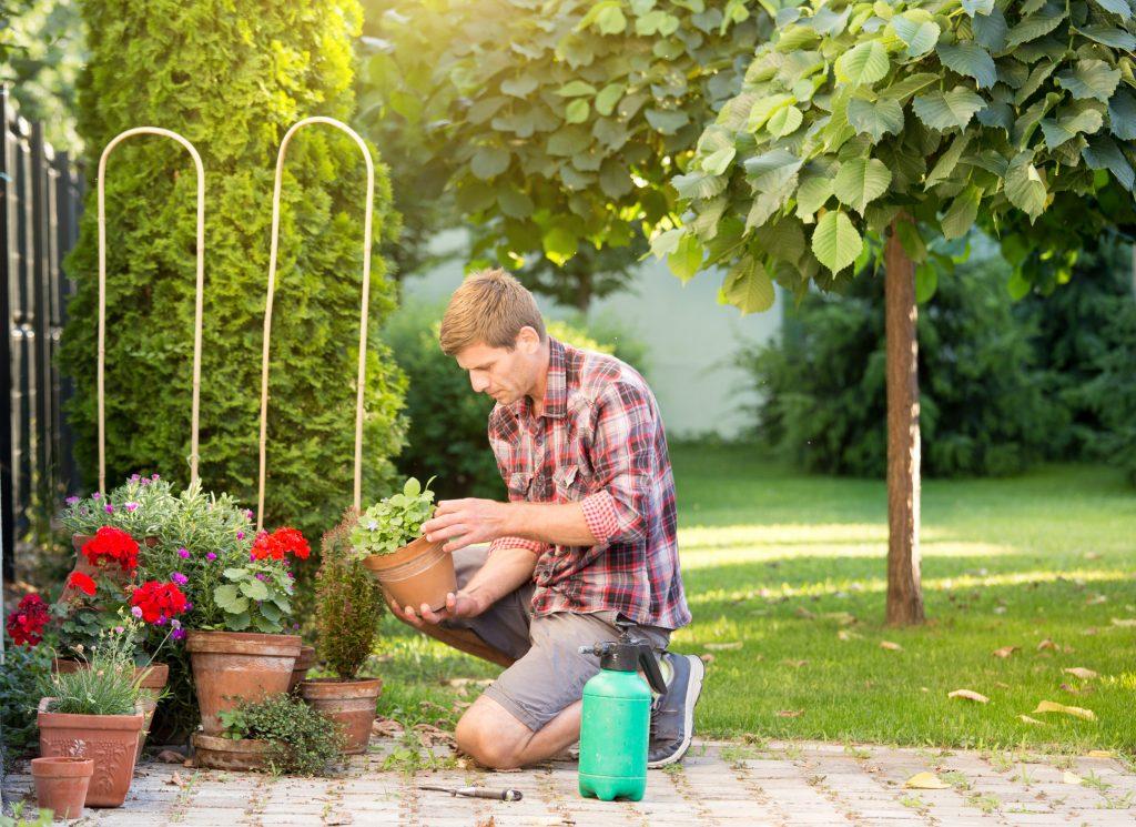 Preparare il giardino per primavera (4)