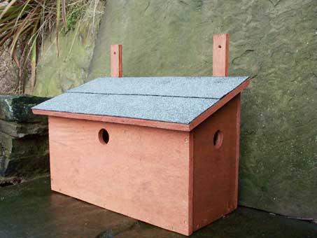 Casette sui rami per uccelli (2)