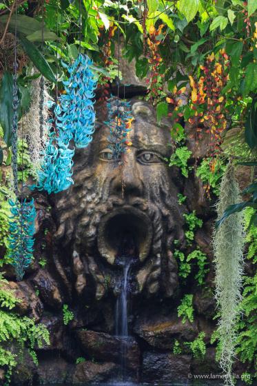 i giardini della Mortella 1
