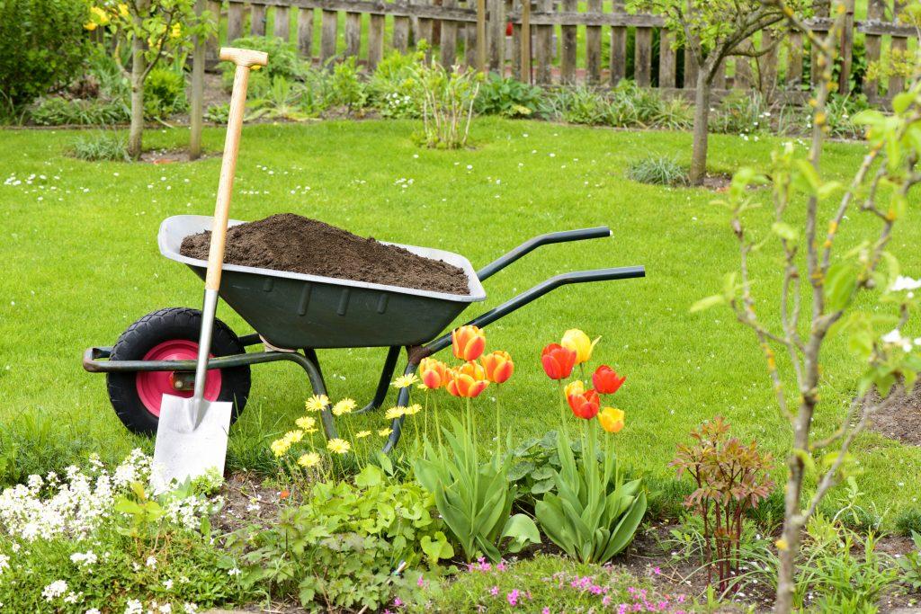 attrezzi per giardinaggio-vanga