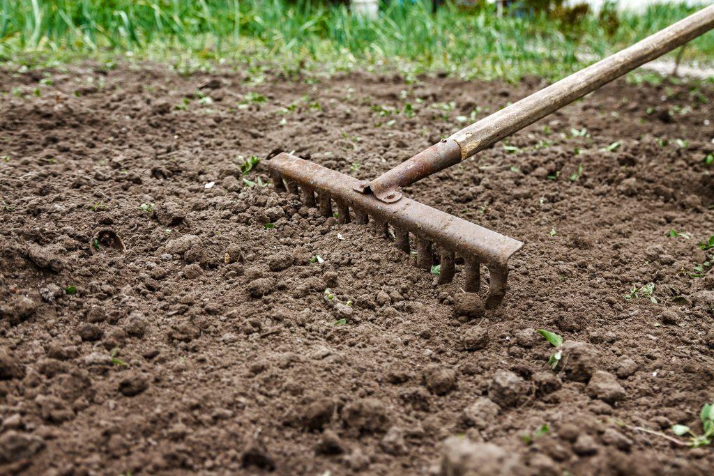 attrezzi per giardinaggio-rastrello