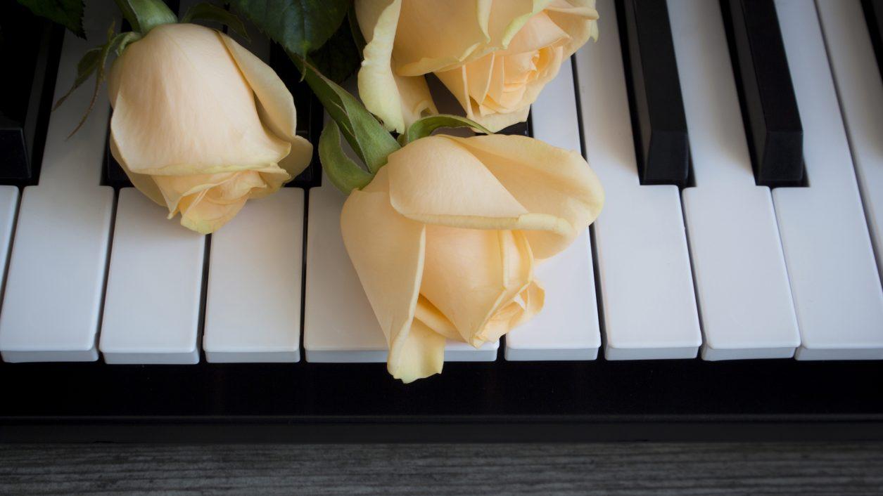 Gli effetti della musica sulle piante