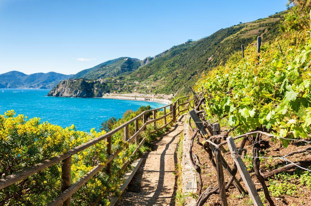 Parco Nazionale 5 Terre - Liguria
