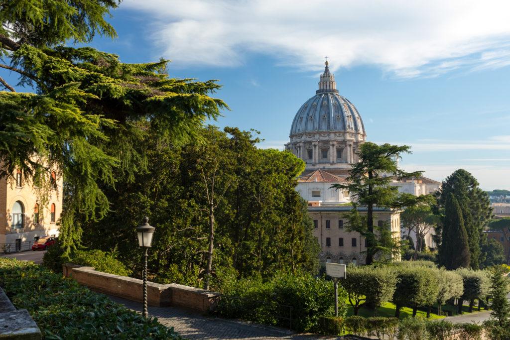 Giardini vaticani 21