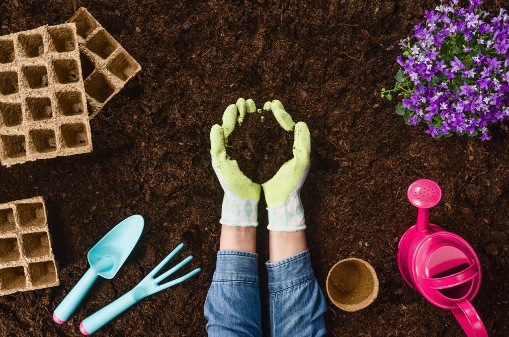 Piantare una pianta con gli strumenti da giardinaggio