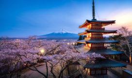 i giardini sakura